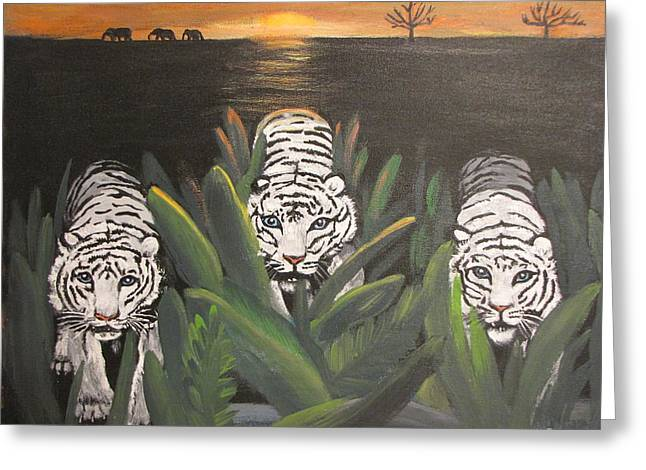 White Tiger Encounter Greeting Card
