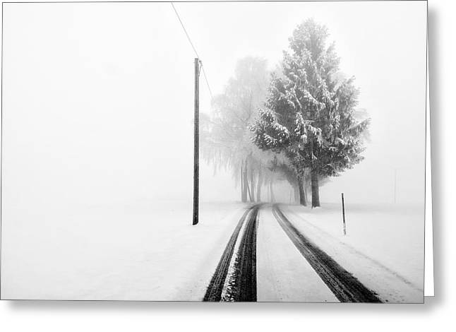 White Tree Gate Greeting Card by Franz Bogner