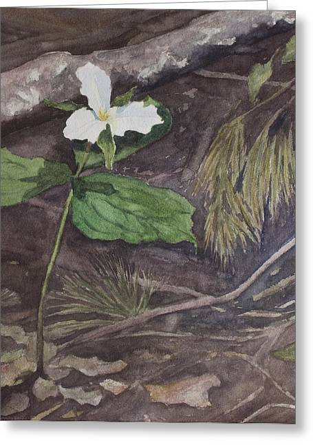 White Trillium  Greeting Card by Debbie Homewood