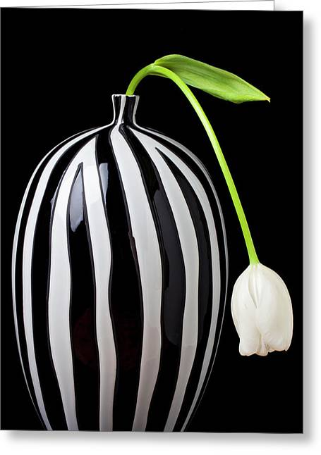 White Greeting Cards - White tulip in striped vase Greeting Card by Garry Gay