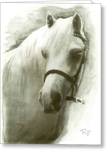 White Welsh Pony Greeting Card