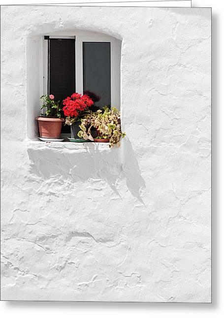 White Window Greeting Card