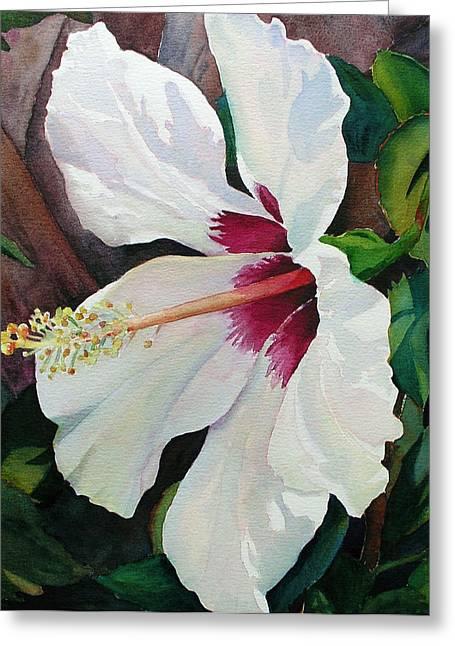 White Wonder Greeting Card by Judy Mercer