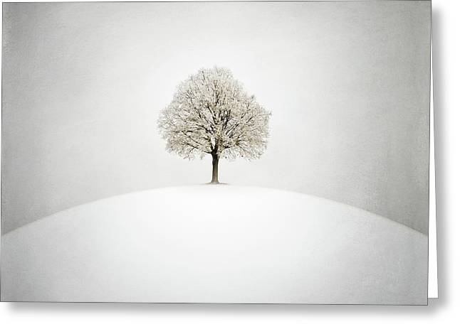 White Greeting Card by Zoltan Toth