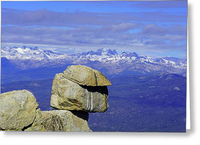Whitebark Vista II Greeting Card by Dale Matson