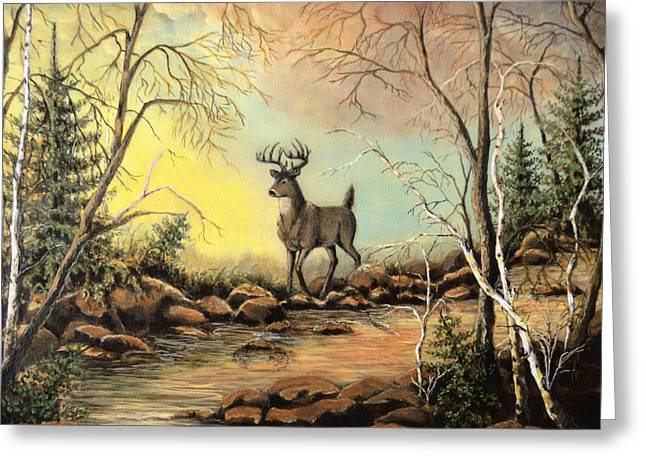 Whitetail Buck Creek Greeting Card by Kimberly Benedict