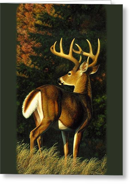 Whitetail Buck Phone Case Greeting Card
