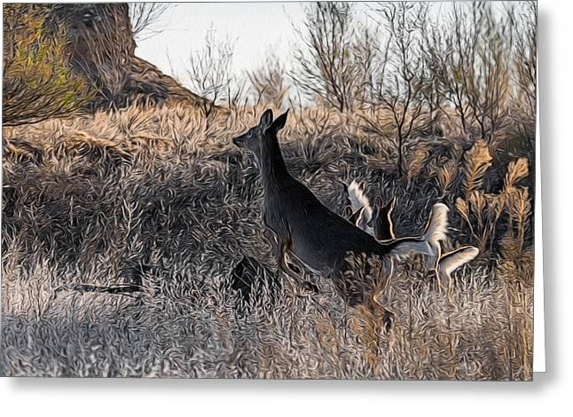 Whitetail Lift Off Digital Art Greeting Card by Ernie Echols