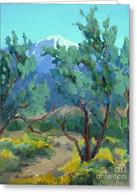 Whitewater Preserve Palm Springs Greeting Card