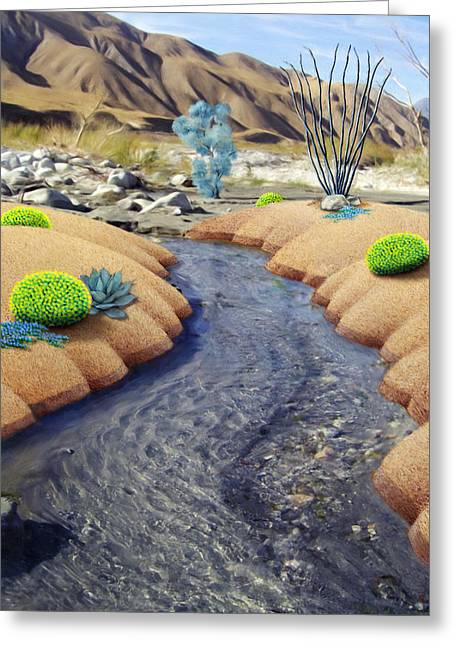 Whitewater Greeting Card by Snake Jagger
