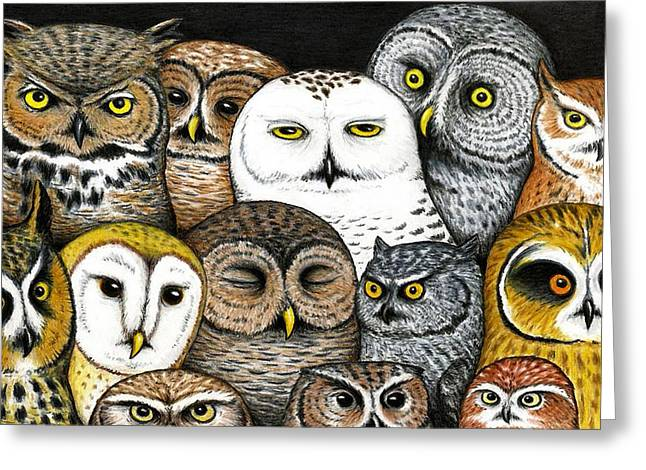 Who's Hoo Greeting Card by Don McMahon