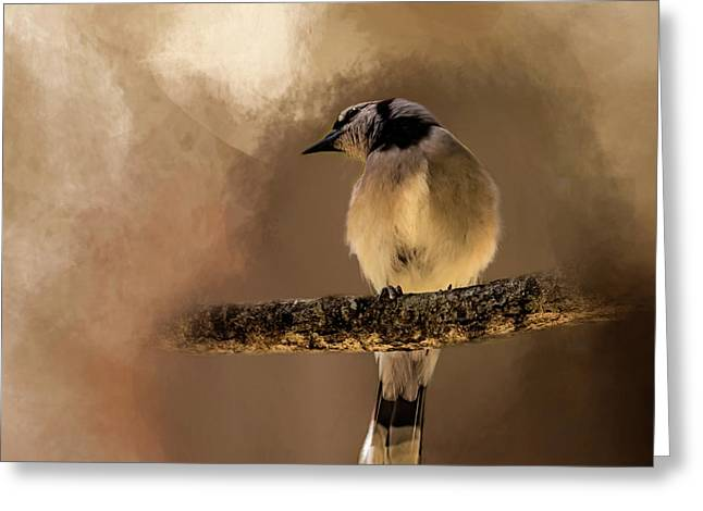 Who's There? Greeting Card by Cyndy Doty