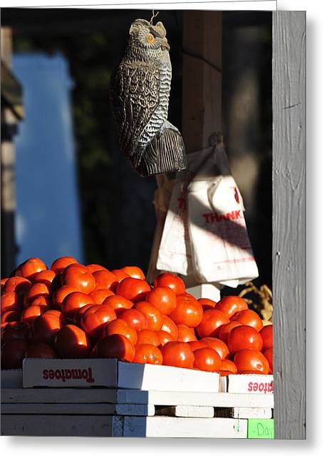 Who's Tomatoes Greeting Card by Jan Amiss Photography