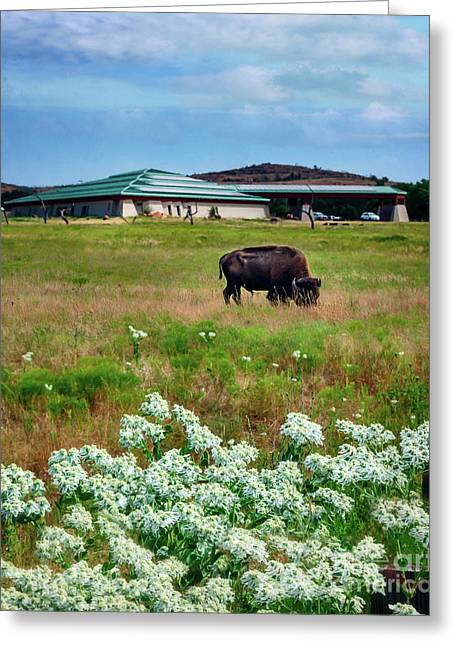 Wichita Mountain Wildlife Reserve Welcome Center Verticle Greeting Card by Tamyra Ayles