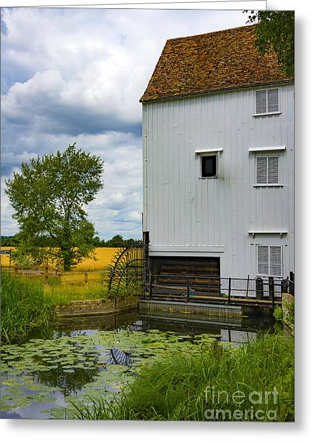 Wicken Fen Greeting Card by Svetlana Sewell