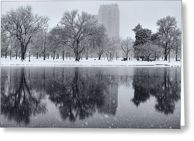 Snowy Reflections Of Trees In Lake At City Park, Denver Co  Greeting Card