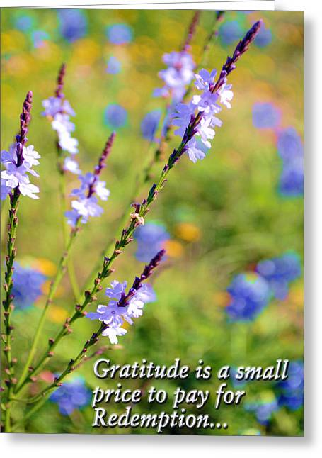 Wild About Gratitude 1 Greeting Card