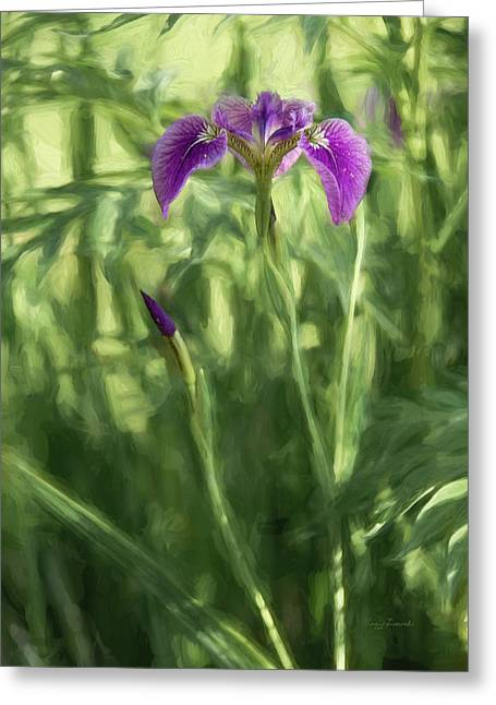 Greeting Card featuring the photograph Wild Alaskan Iris II by Penny Lisowski