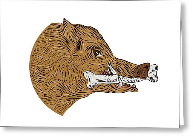 Wild Boar Razorback Bone In Mouth Drawing Greeting Card