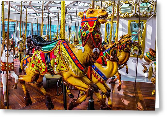 Wild Camel Carrousel Ride Greeting Card