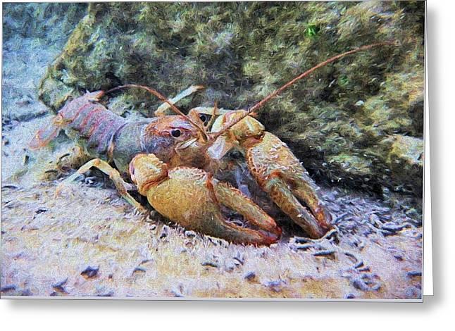 Wild Crawfish  Greeting Card by JC Findley