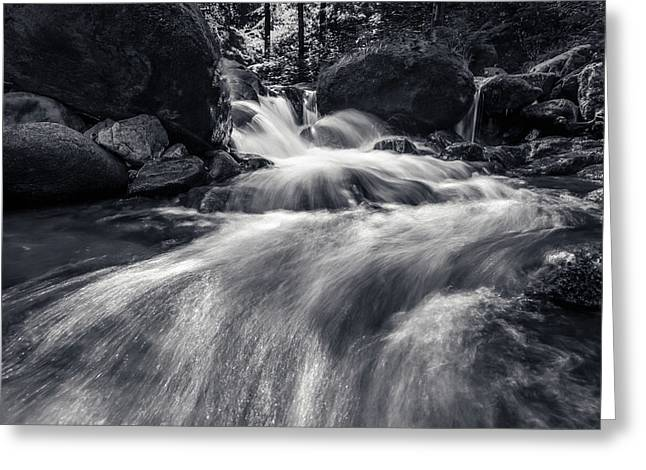wild creek in Harz, Germany Greeting Card by Andreas Levi