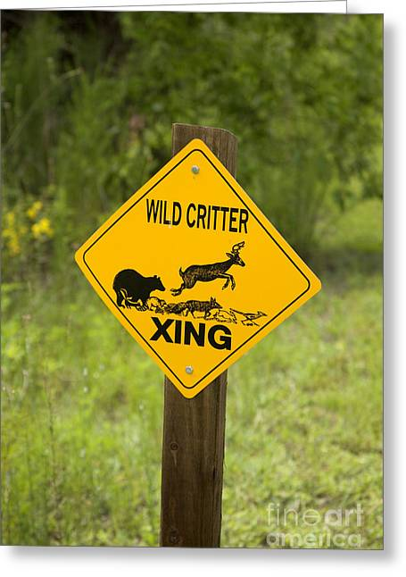 Wild Critter Crossing Sign Greeting Card by Inga Spence