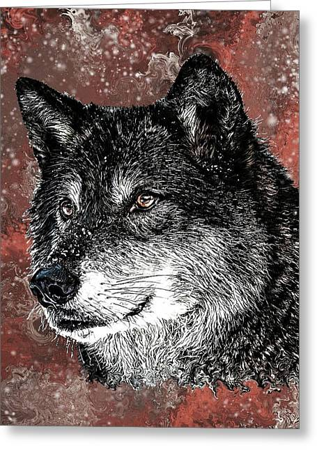 Wild Dark Wolf Greeting Card