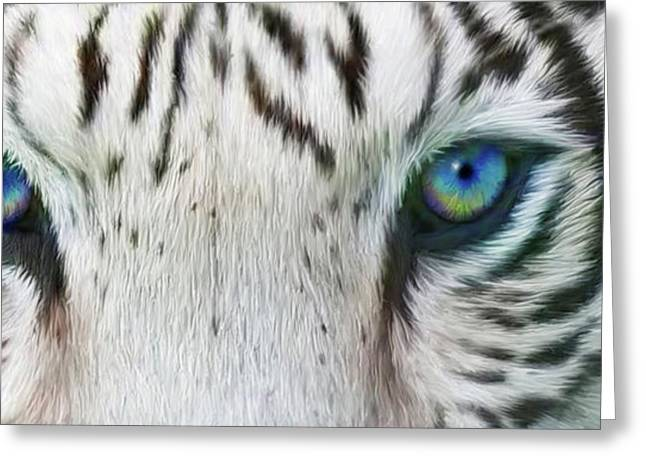 Wild Eyes - White Tiger Greeting Card