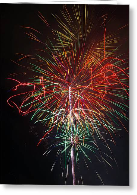 Wild Fireworks Greeting Card by Garry Gay