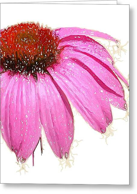 Greeting Card featuring the photograph Wild Flower One  by Heidi Smith