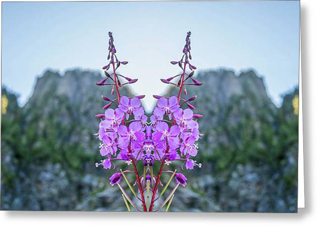 Wild Flower Reflection Greeting Card