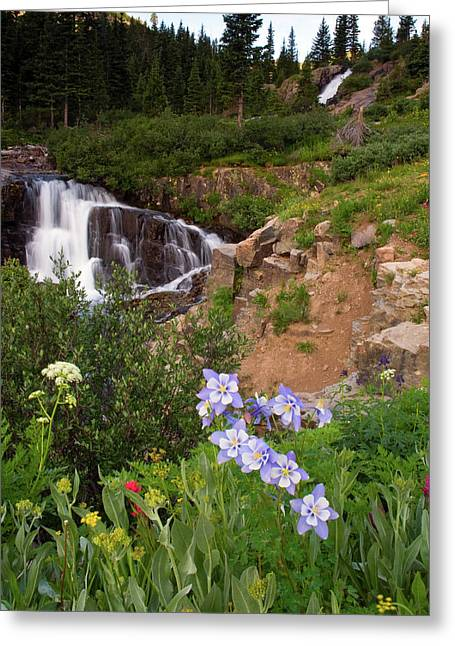 Wild Flowers And Waterfalls Greeting Card
