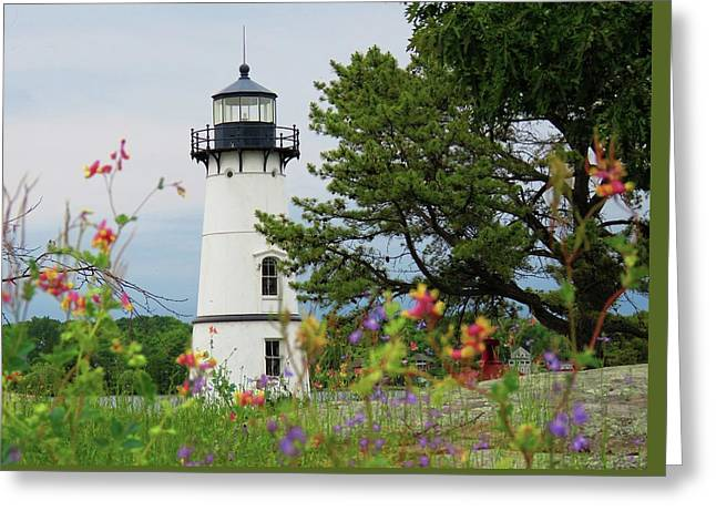 Wild Flowers On Rock Island Greeting Card