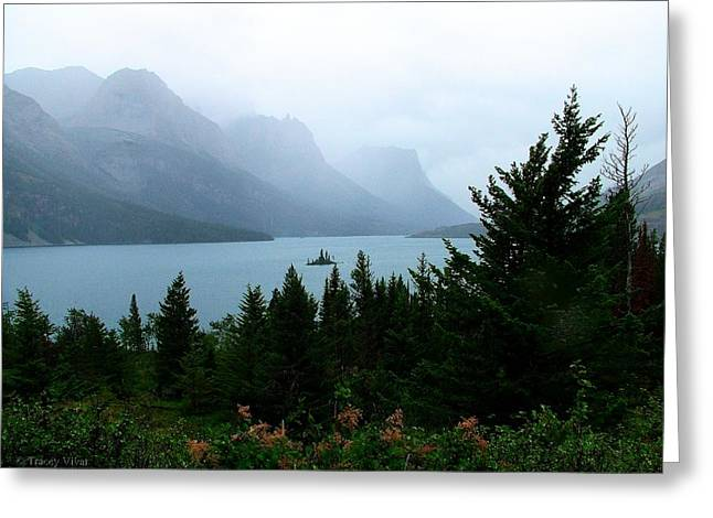 Wild Goose Island In The Rain Greeting Card