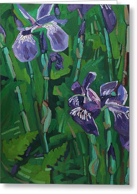Wild Iris Greeting Card