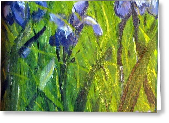 Wild Iris Greeting Card by Susan Coffin