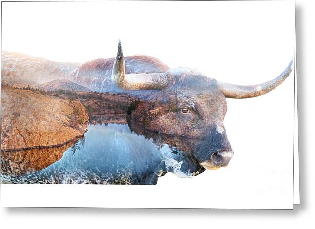 Wild Longhorn Bull And Lake Double Exposure Greeting Card