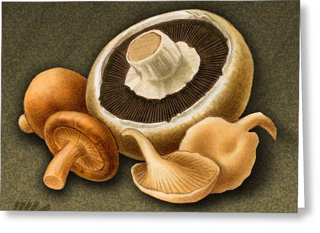 Wild Mix Mushrooms Greeting Card by Marshall Robinson