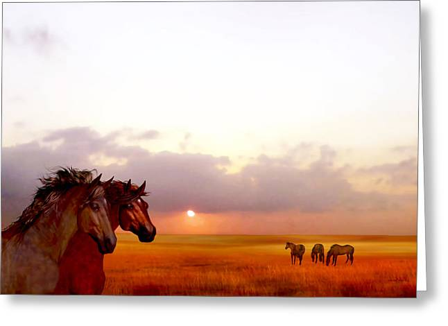 Wild Moorland Ponies Greeting Card