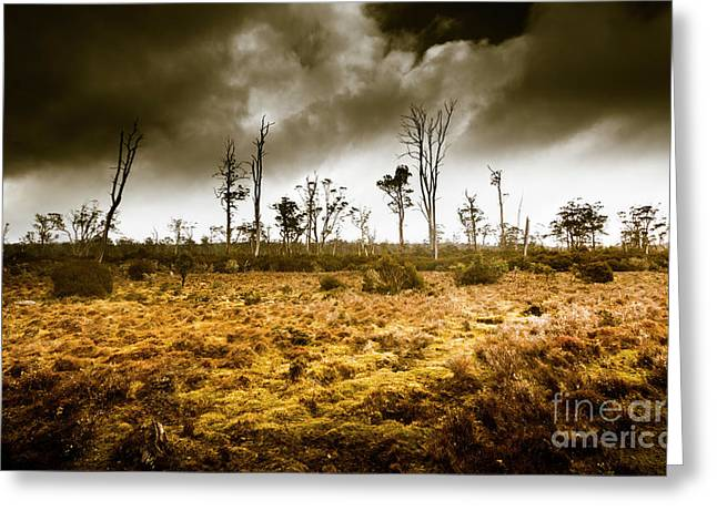 Wild Moors  Greeting Card