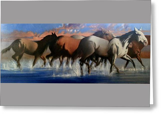 Wild Mustangs Of The Verder River Greeting Card