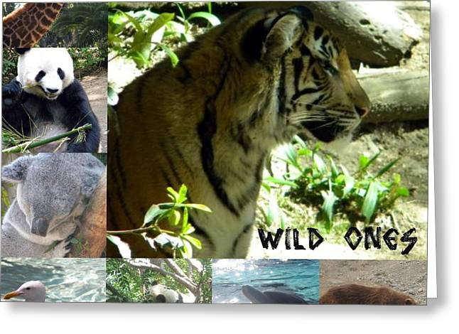 Greeting Card featuring the photograph Wild Ones by Amanda Eberly-Kudamik