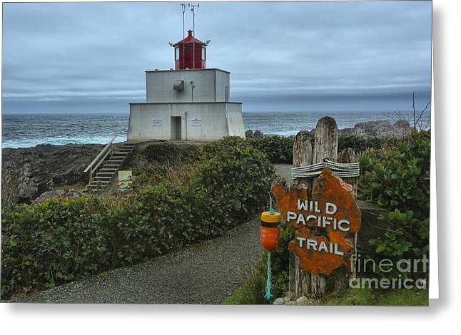 Wild Pacific Lighthouse Greeting Card by Adam Jewell