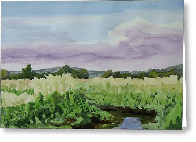 Wild Rice Field Greeting Card by Bethany Lee