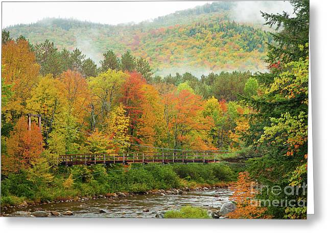 Greeting Card featuring the photograph Wild River Bridge by Susan Cole Kelly