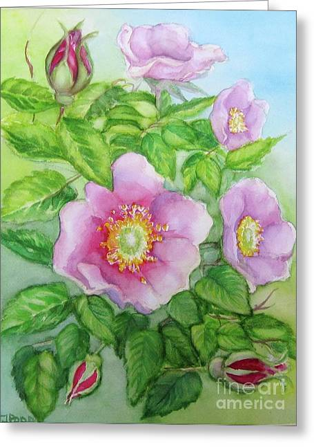 Wild Rose 3 Greeting Card