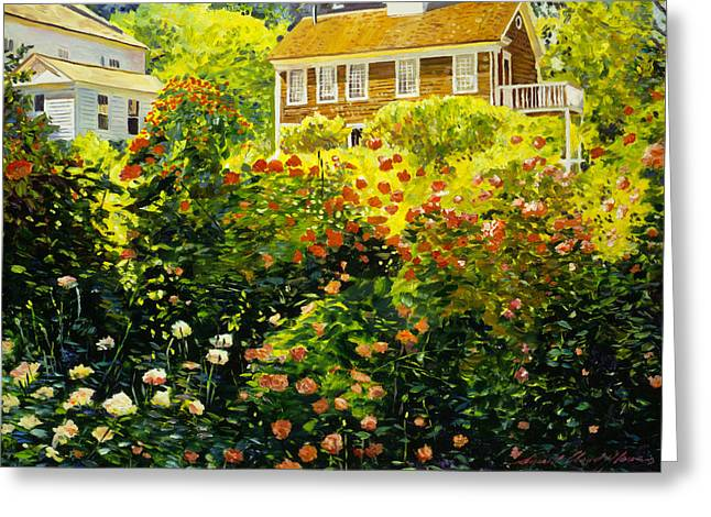 Wild Rose Country Greeting Card by David Lloyd Glover