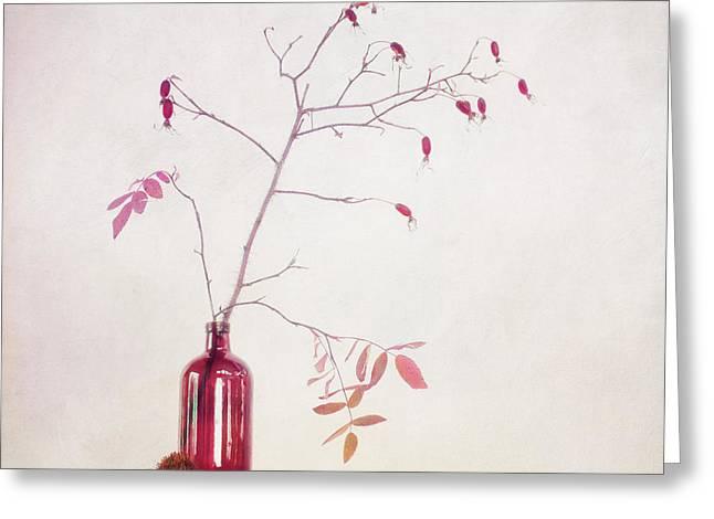 Wild Rosehips In A Bottle Greeting Card by Priska Wettstein