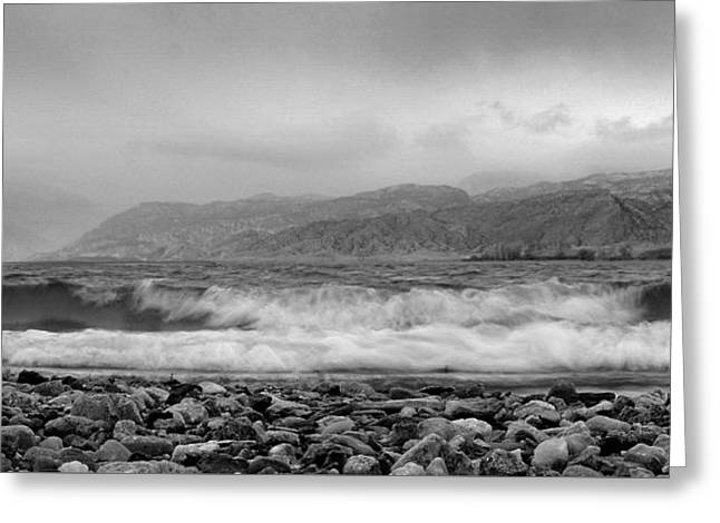 Greeting Card featuring the photograph Wild Spaces.. by Al Swasey